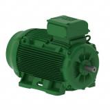 W22 Super Premium efektivitātes motori