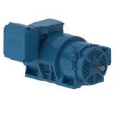 W40 indukcijas motori